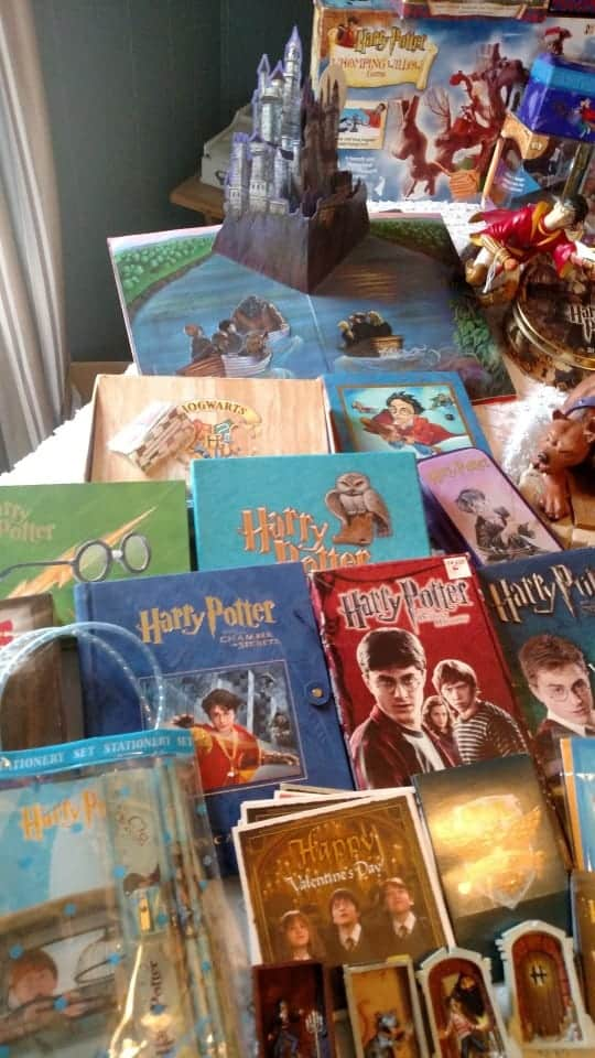 Harry Potter Collection - Shawna Brown 7