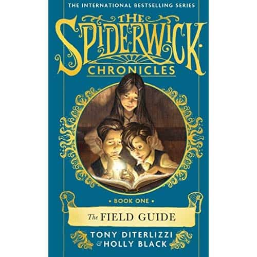 Spiderwick book