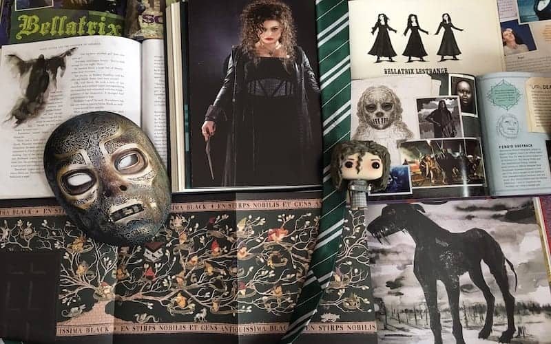 10 Amazing Harry Potter Companion Books & BTS Guides